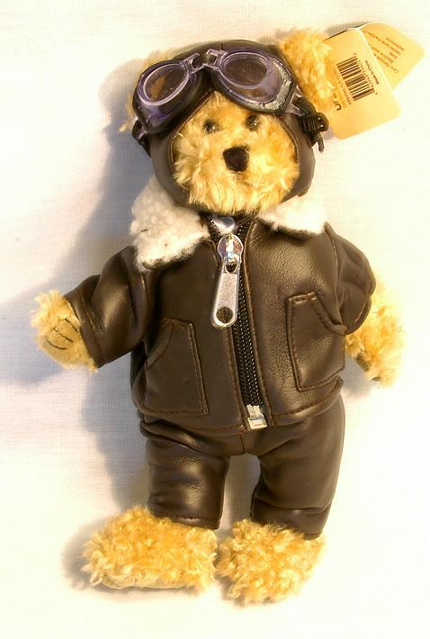 Pilot Teddy Bear is Ready for Take-Off!